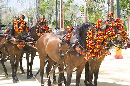 caballos de Jerez